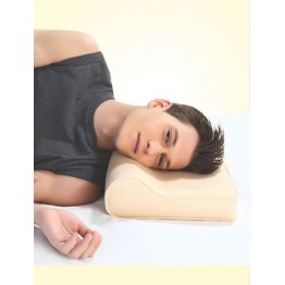 Flamingo Cervical Pillow (Universal)