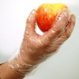 Disposable Transparent Clear Plastic Gloves (100 pcs Pack)